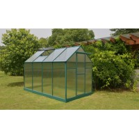 Premium Quality Greenhouse 10 x 6 ft