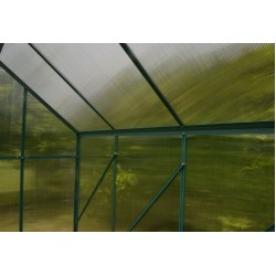 Premium Quality Greenhouse 8 x 6 ft
